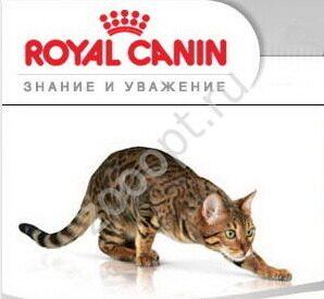 Josera Корм супер-премиум класса для кошек и собак в